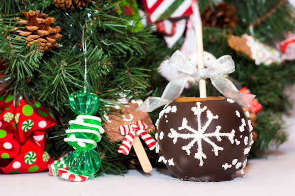 Holiday Caramel Apples Snowflake (available in Milk or Dark Chocolate)